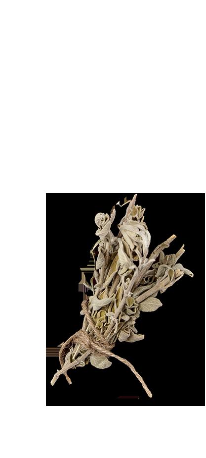 Side Plate of RAVIOLI CARBONARA, ΑΡΩΜΑΤΙΣΜΕΝΗ ΜΕ ΦΑΣΚΟΜΗΛΟ