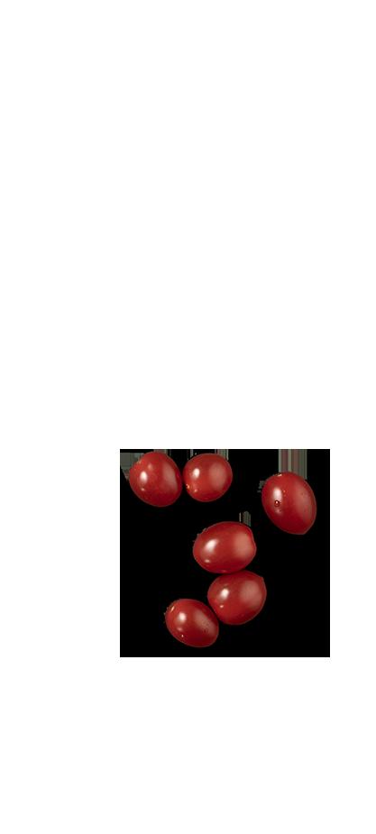Side Plate of TORTELLINI AL FORNO ΜΕ PEPPERONI ΚΑΙ ΚΟΚΚΙΝΗ ΣΑΛΤΣΑ